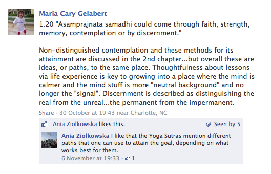 Ania Ziolkowska doesn't understand the Yoga Sutras