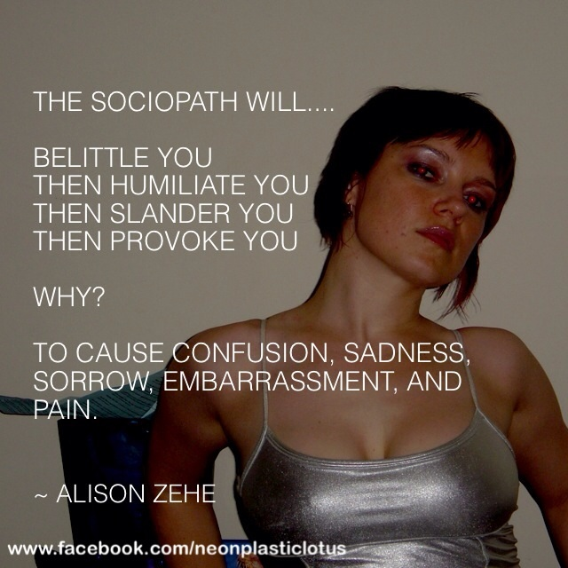 Narcissistic Sociopath Traits - Ania Ziolkowksa / Ania Anicca on
